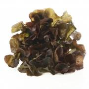 Oak-leaf